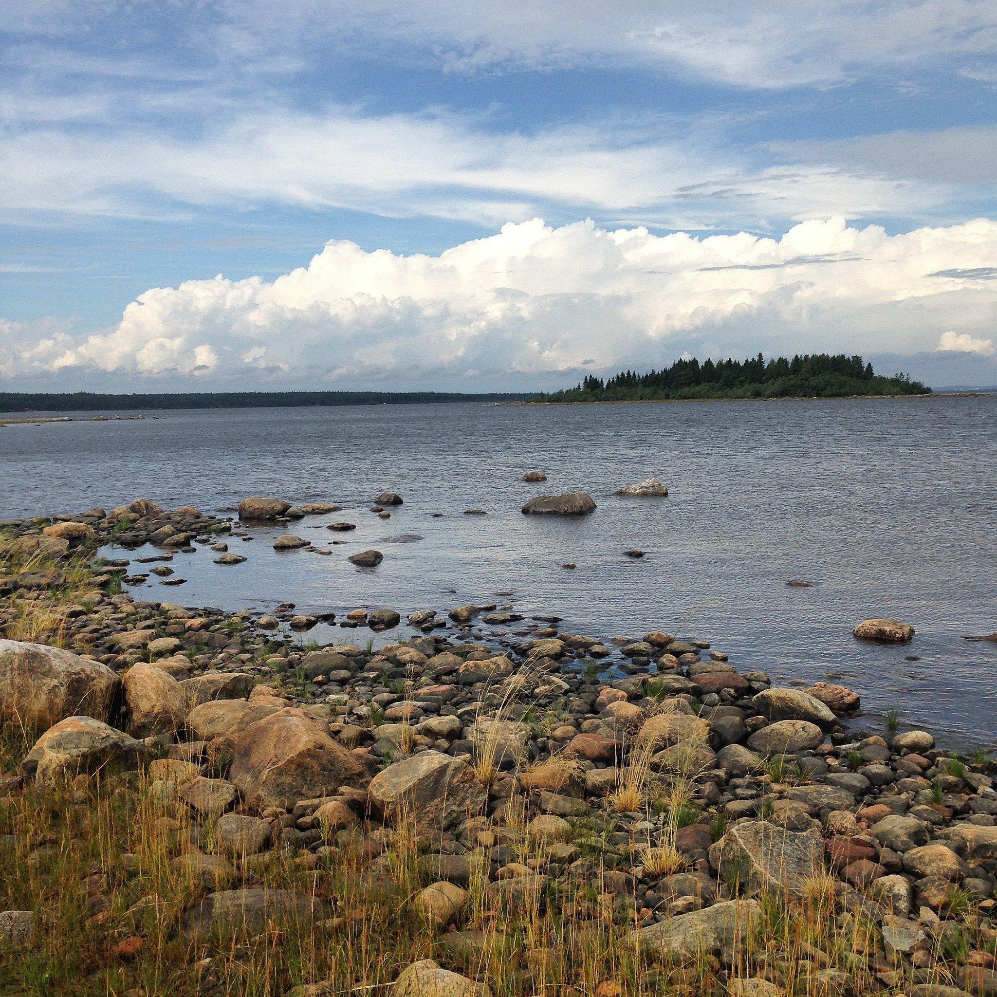 El mar báltico desde una reserva natural de laponia sueca